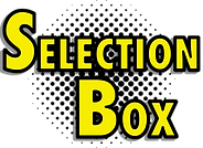 Selection Box Text Only.png