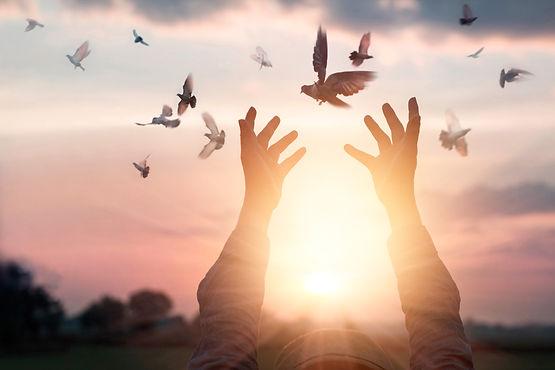 woman-praying-and-free-bird-enjoying-nat