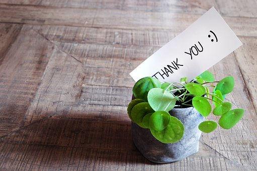 thank-you-3690115__340.jpg