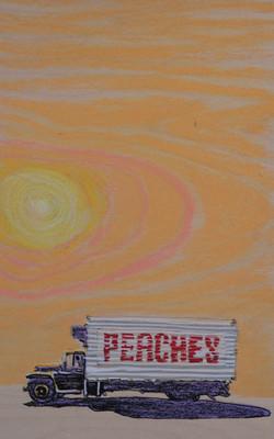 Joshua Tree Peaches