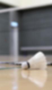 Badminton i Dall-Ferslev