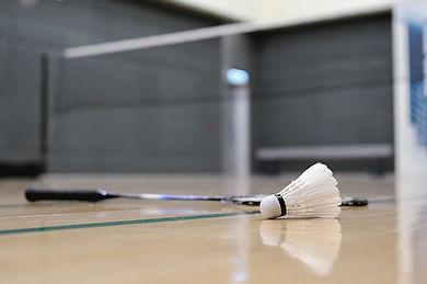 Pluimbal en Badmington Racket