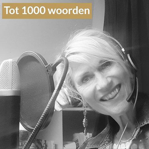 Voice-over opname tot 1000 woorden