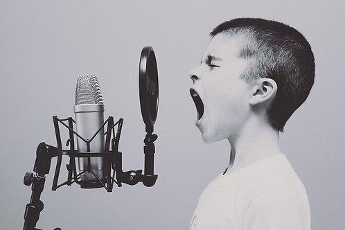 Coaching vocal 1h