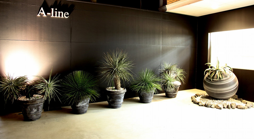 a-line1.jpg