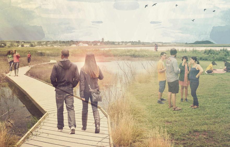 Nicholas_Rendering+Wetland.jpg