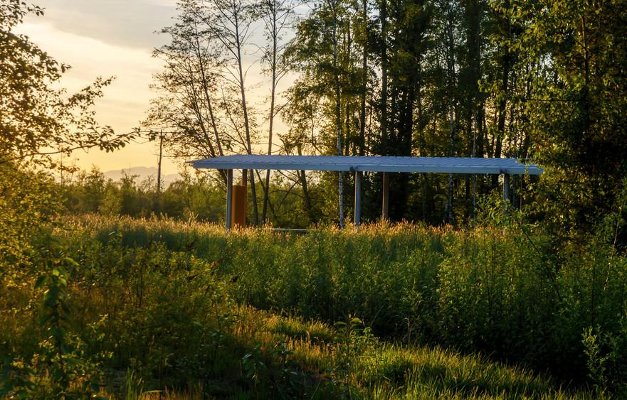 13013+-+marsh+shelter+May+2017+evening+-