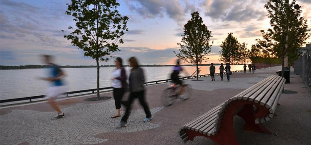 Toronto Central Waterfront - 6.jpg