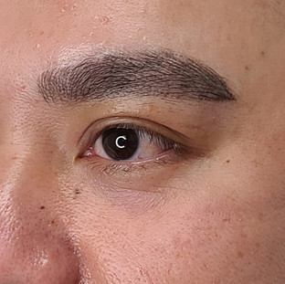Male Combo Eyebrows