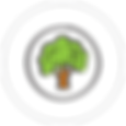 Tree Icon.png