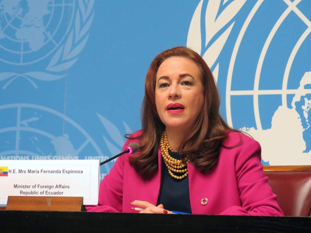 María Fernanda Espinosa, candidata a jefaturar la OEA