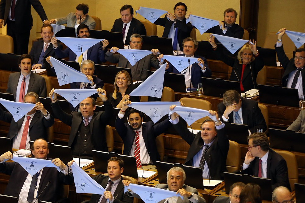Diputados elevan el pañuelo celeste provida