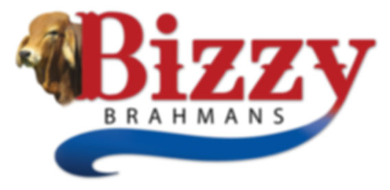 bizzy brahmans logo_with bull head.jpg