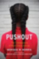 pushout_pb_final.JPG
