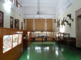 Jodhpur Museum before re-design