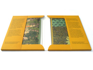 GardenCosmos_1024x768_2c.jpg
