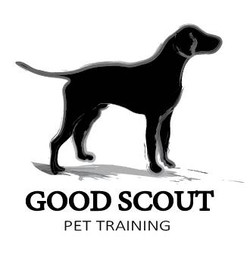 Good Scout Illustration and Logo