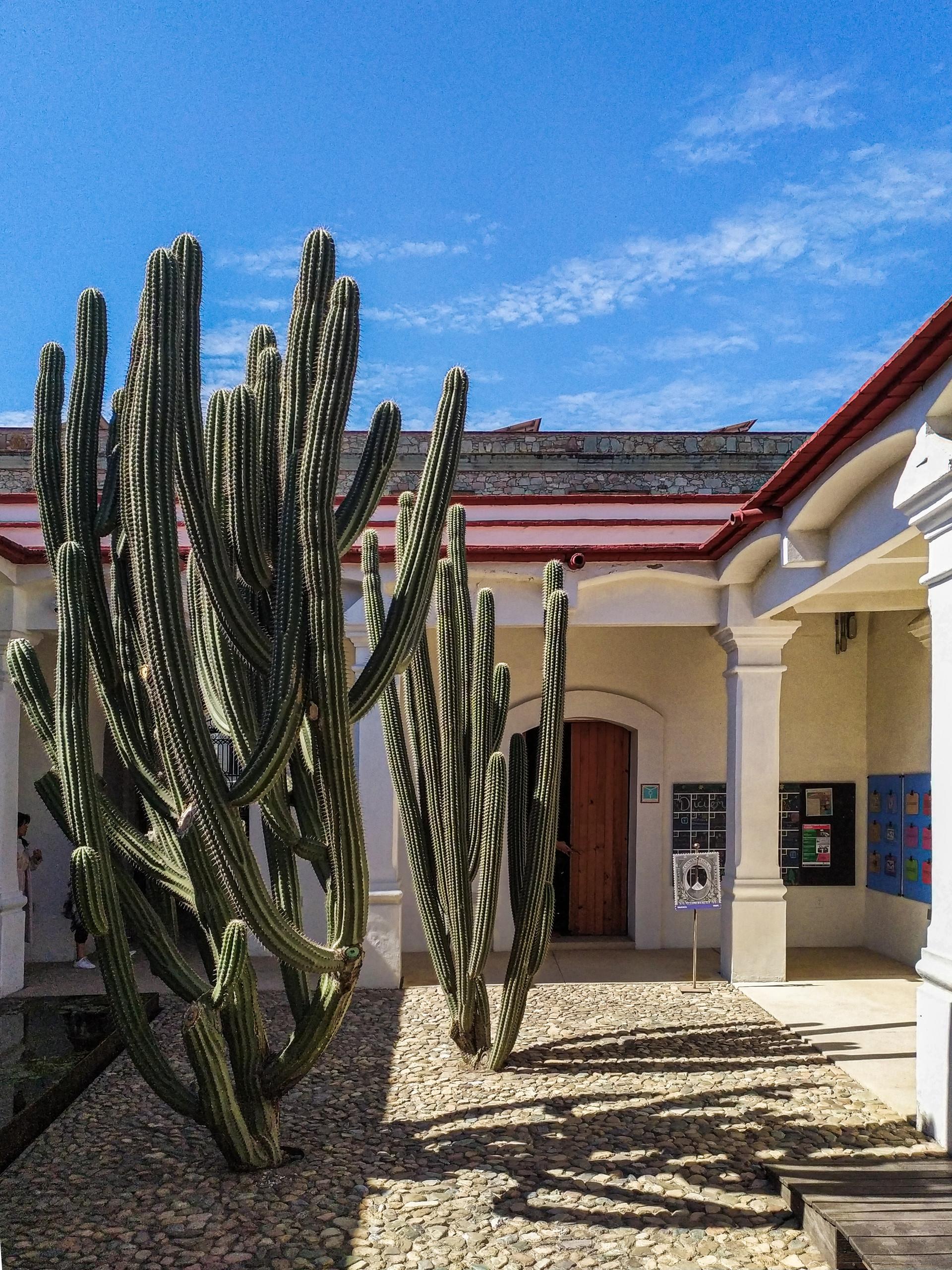 MUSEO DE FILATELIA DE OAXACA - 2019 ©