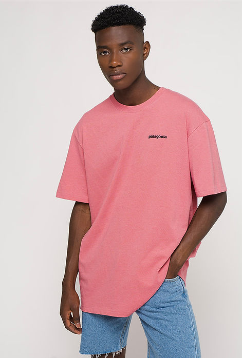ae020-0102-camiseta-patagonia-2.jpg