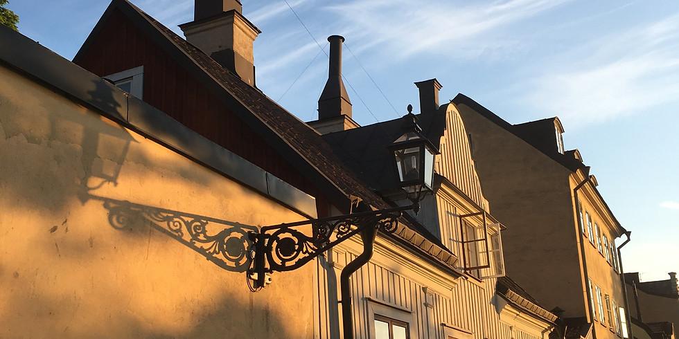 Fjällgatan & Stigberget - en stadsvandring