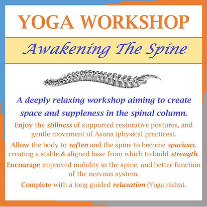 Awakening the spine for website_edited_e