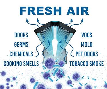 FRESH AIR.jpg