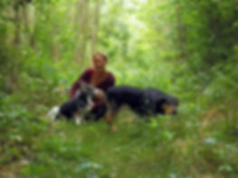 hundepension, hundepension niederösterreich, hundepension tuln, hundepension klosterneuburg, hundesitter, hundesitter niederöstereich, hundesitter tulln, hundesitter klosterneuburg, hundebetreuung, hundebetreuung niederösterreich, hundebetreuung tulln,