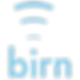 BIRN-logo.png