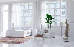 Modern Realty Staging