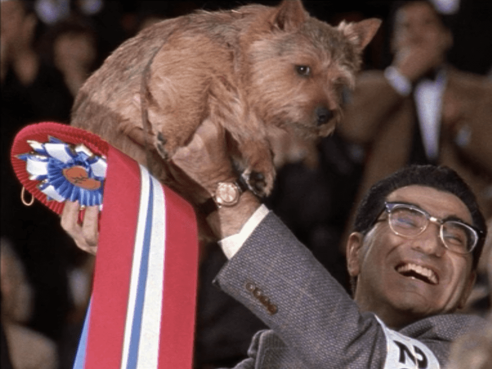 BEST IN SHOW - Winky's Victory
