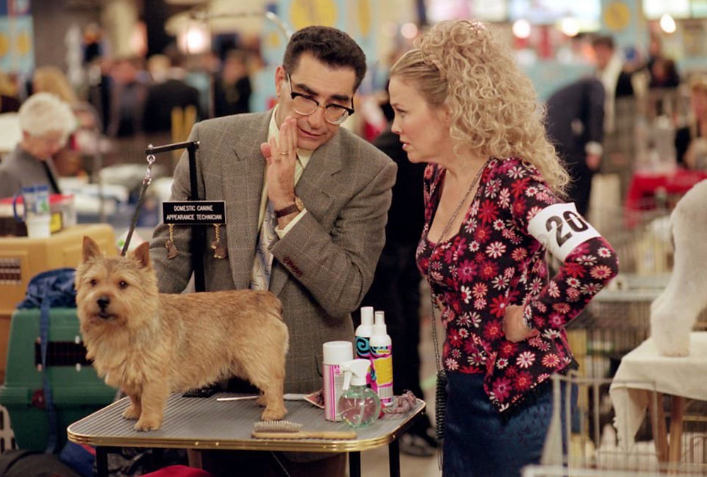 BEST IN SHOW - Winky, Gerry (Levy) and Cookie (O'Hara)
