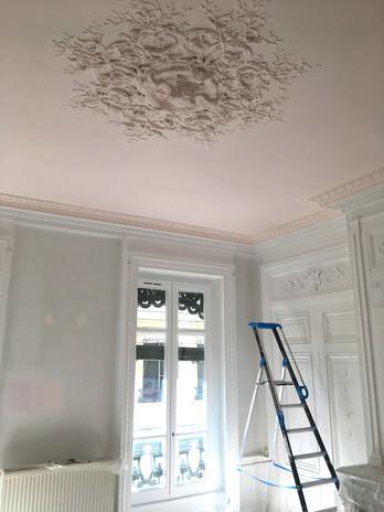 Rénovation Moulures Appartement de Standing à Lyon