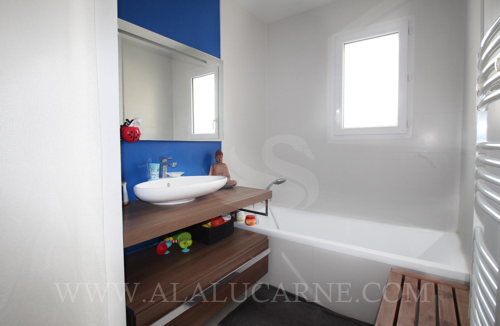 A_vendre_à_Castelnau_maison_sans_vis-à