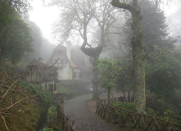 Misty Morning in Madeira
