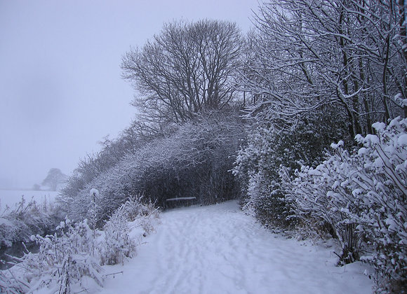 Winter in Naesbyhoved Broby