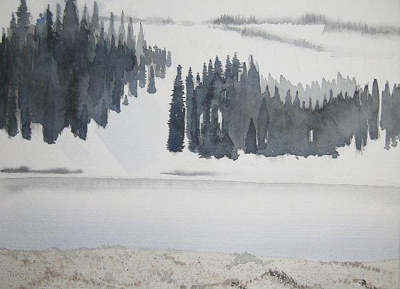 Dunes at Winter
