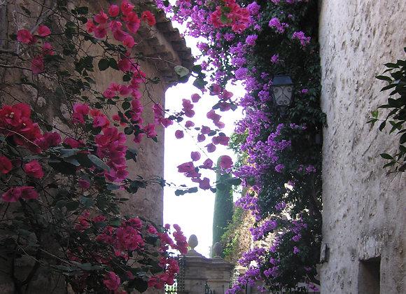 Biot South France
