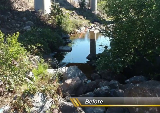 Creek Restoration Project Monitoring