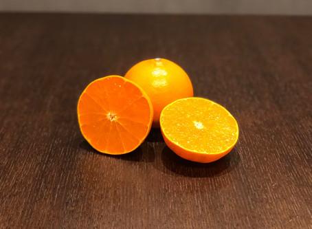 せとか(柑橘)