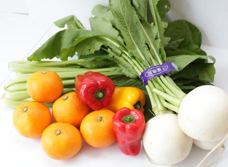 お届けのお野菜について