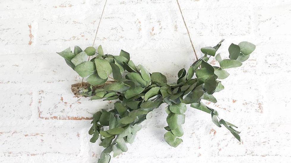 pendente (hanger) eucalipto p