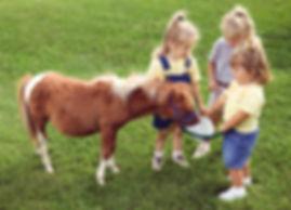 Pony-Liebe
