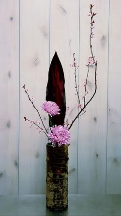 Chrysanthemums, Plum Blossoms & Ti