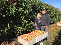 Lindy & Carter Apple Picking