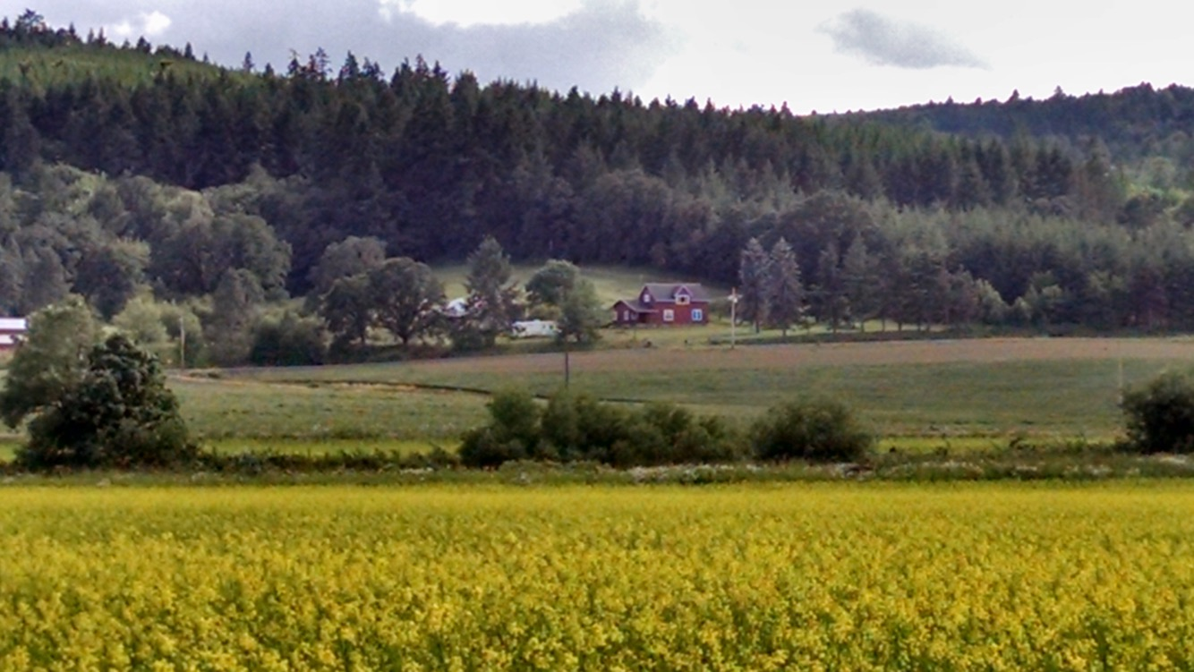 Wide shot of Farm
