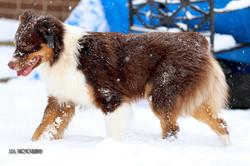 Nikita 2nd Birthday Snow Play-25