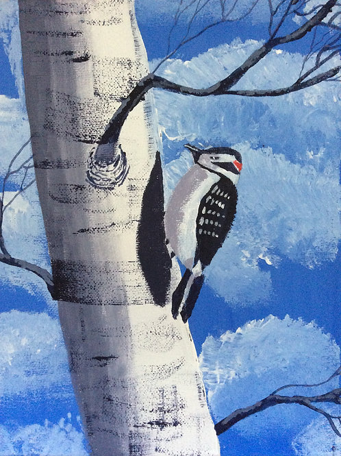 Lesser Spotted Woodpecker on a Silver Birch by Michelle Cush