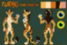 ASE 2019 At con ref sheet Jackson cheeta