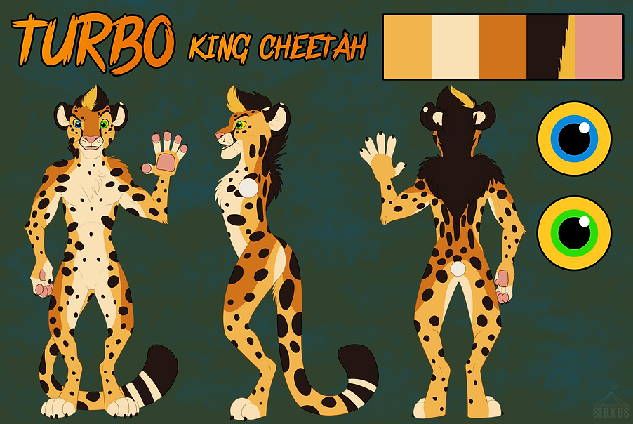 ASE 2019 At con ref sheet Jackson cheeta