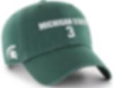 sadler3 hat.png